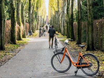 Young Dane cycling in Nørrebro, Copenhagen